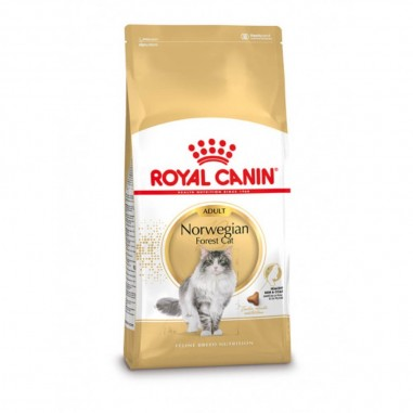 Royal Canin Norwegian Forest Cat 2 kg