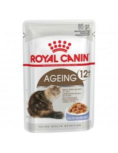 Royal Canin Ageing 12+ in Gelei 12 x 85 gram
