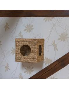 Kubus voor wandmontage Waterhyacint