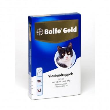 Bolfo Gold Kat 80 4 pipetten
