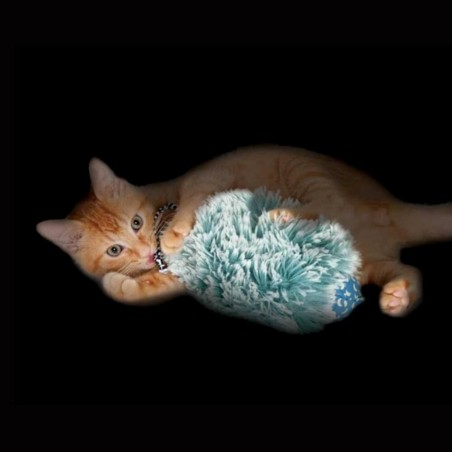 Nighttime Cuddle Toy