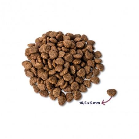 Renske Super Premium Adult Verse Eend 400 gram