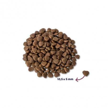 Renske Super Premium Adult Verse Zalm 400 gram