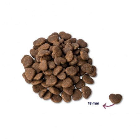 Renske Super Premium Adult MAXI Verse Oceaanvis en Zalm 400 gram