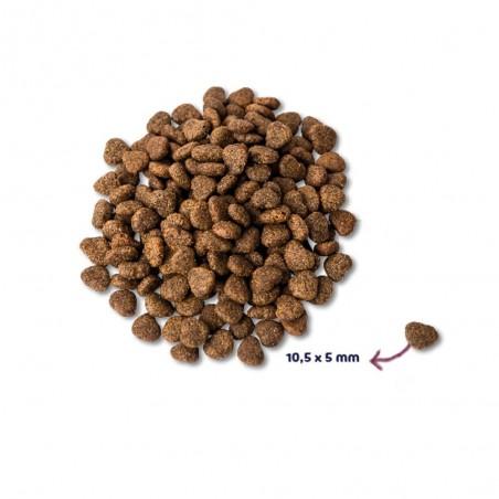 Renske Super Premium Adult Verse Kip 1,5 kg