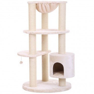 Maine Coon Colosseum Beige